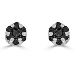 Picture of 0.15CT RD/BLCK DIAMONDS SET IN SILVER LADIES EARRING